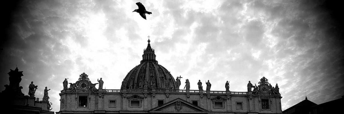 Vogel fliegt über den düsteren Petersdom in Rom